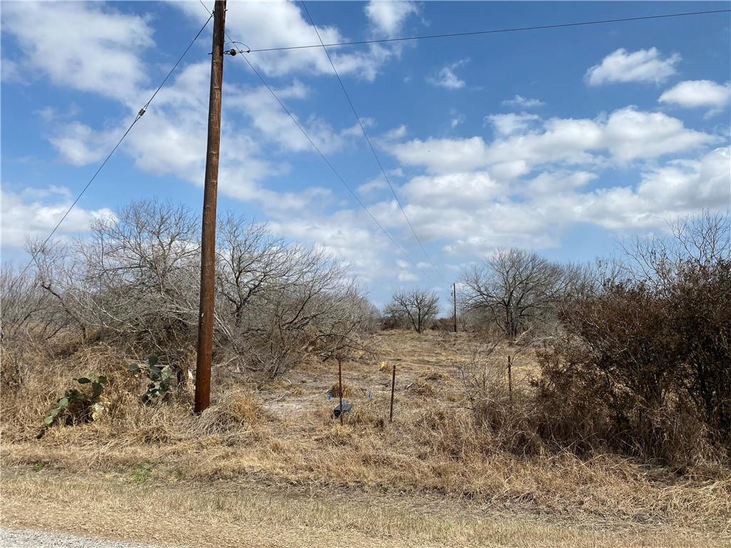 Tract 4 County Road 2431 Property Photo