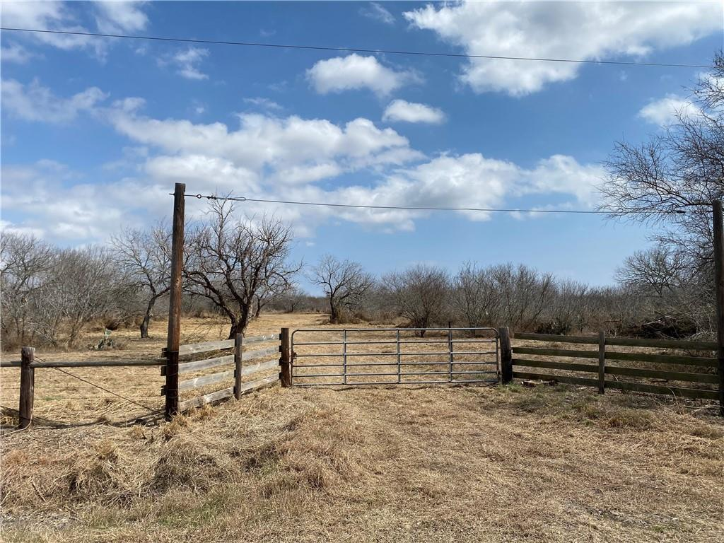 Tract 5 County Road 2431 Property Photo