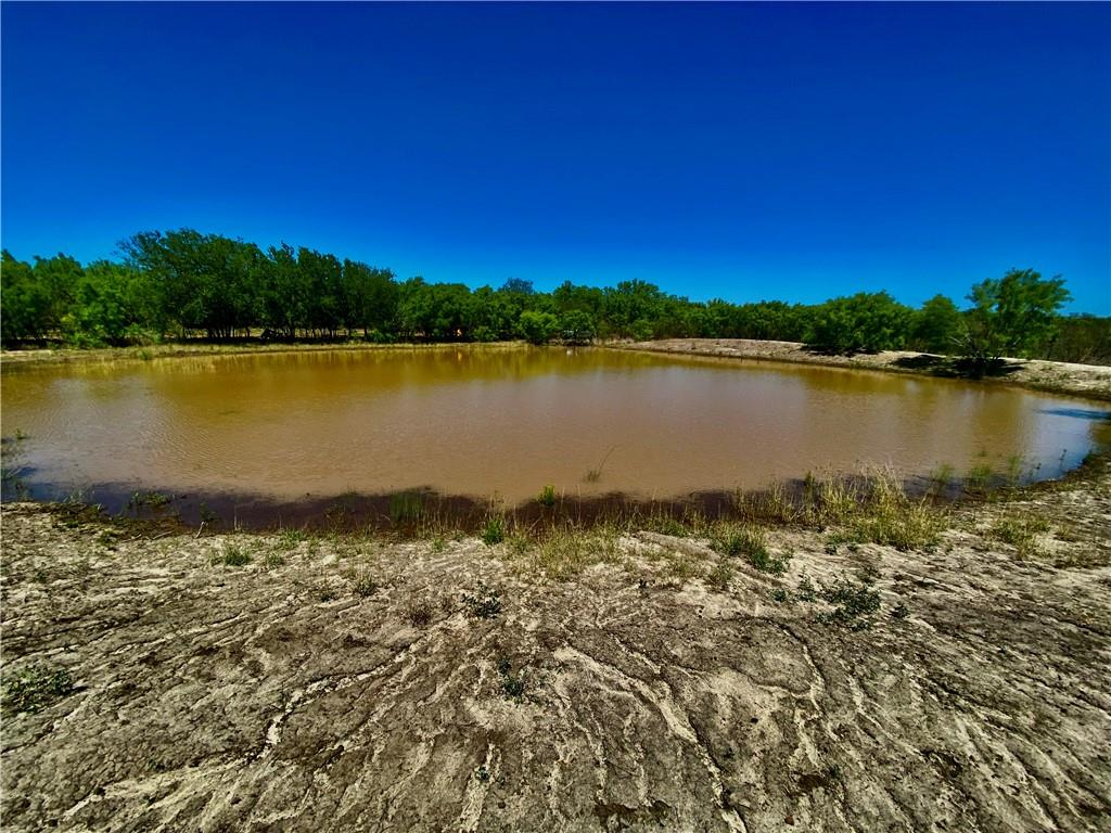 31.32 AC Freddie Copps Road Property Photo - Dilley, TX real estate listing