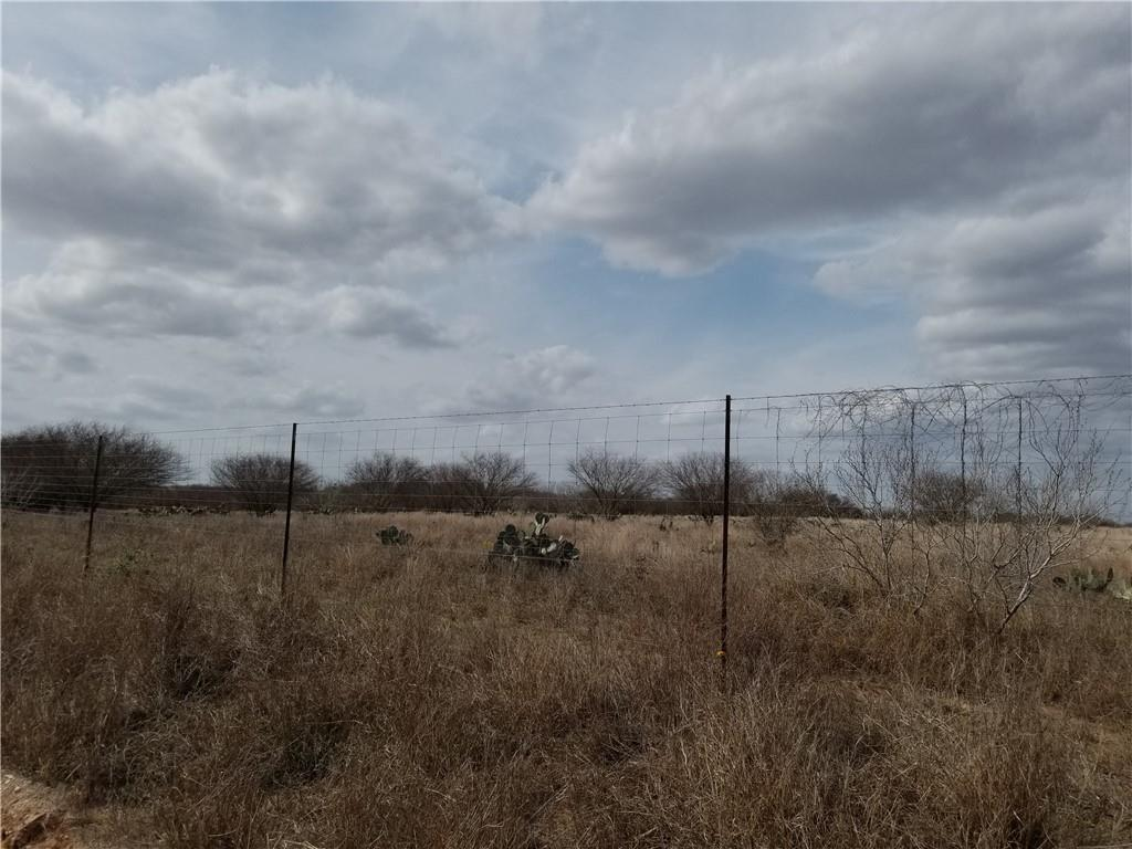 0 County Road 262 Property Photo - Realitos, TX real estate listing