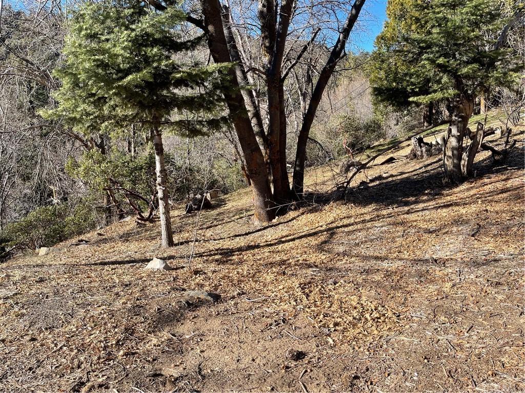 0 Tripp Lane Property Photo