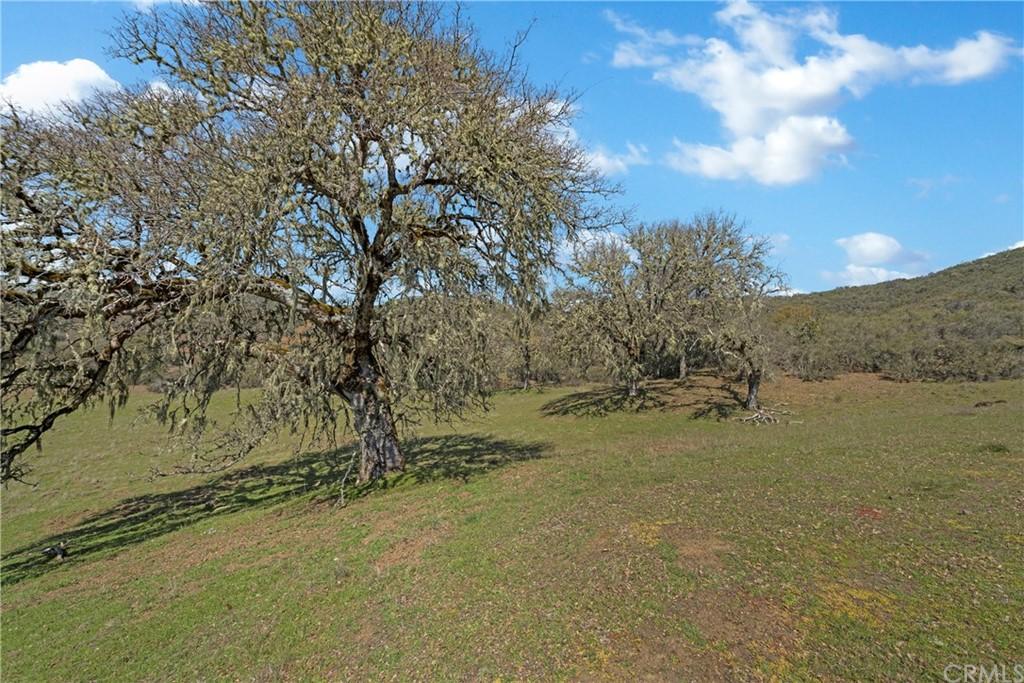1259 Vernal Drive Property Photo