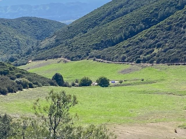 0 Argyle Road Property Photo