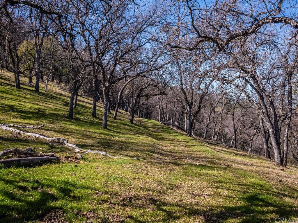 69300 Vineyard Canyon Road Property Photo 71