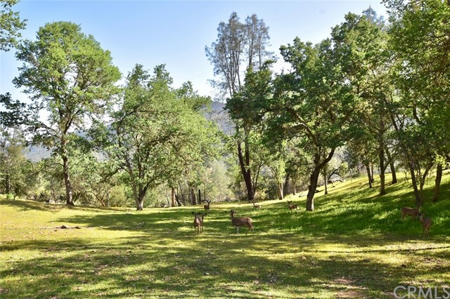 76138 Wild Boar Lane Property Photo