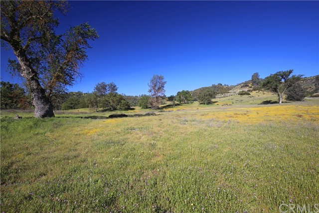 2250 La Panza Road Property Photo 48