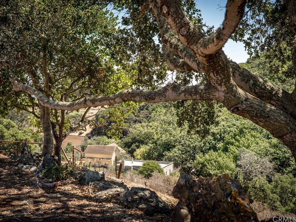 1990 Sycamore Canyon Property Photo 15
