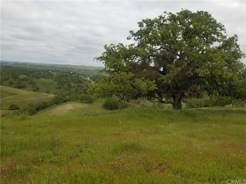 0 Ranchita Canyon Road Property Photo 1