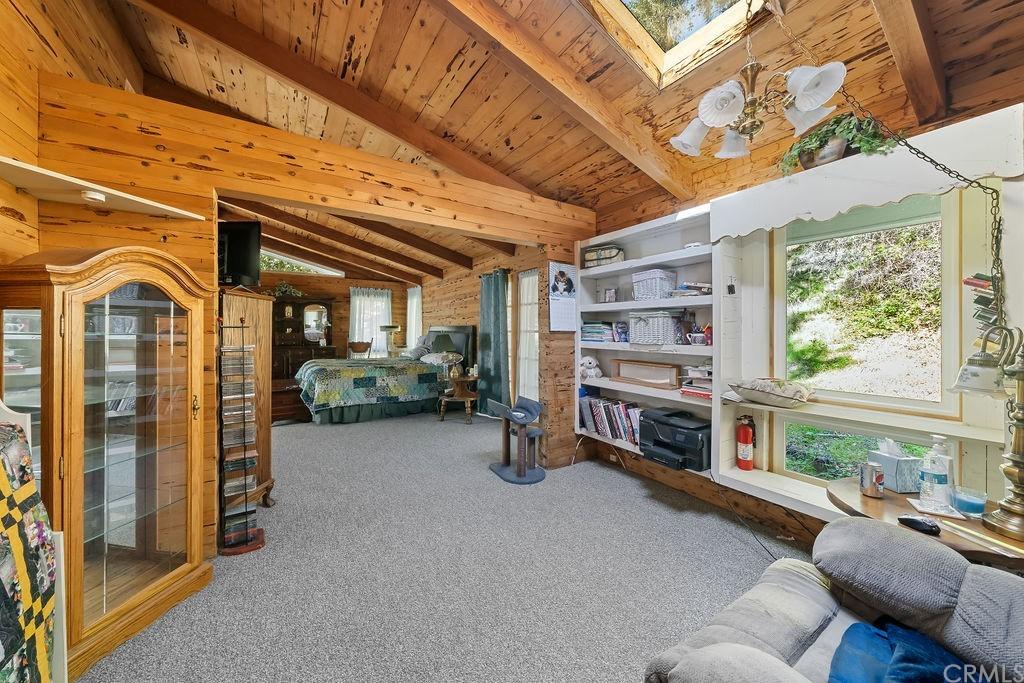 6645 Fern Canyon Road Property Photo 13
