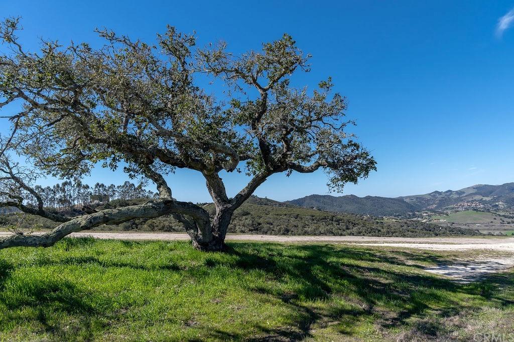6645 Fern Canyon Road Property Photo 35