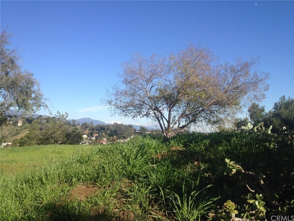 5904 Great Oak Circle Property Photo