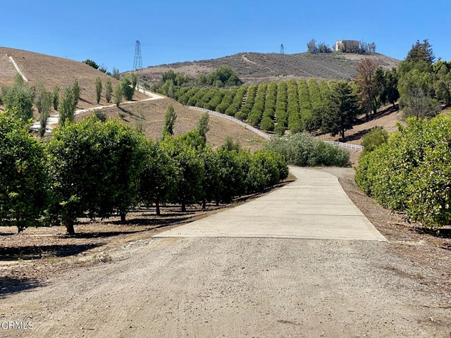 6941 Solano Verde Drive Property Photo