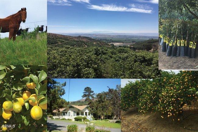 641 W La Loma Avenue Property Photo
