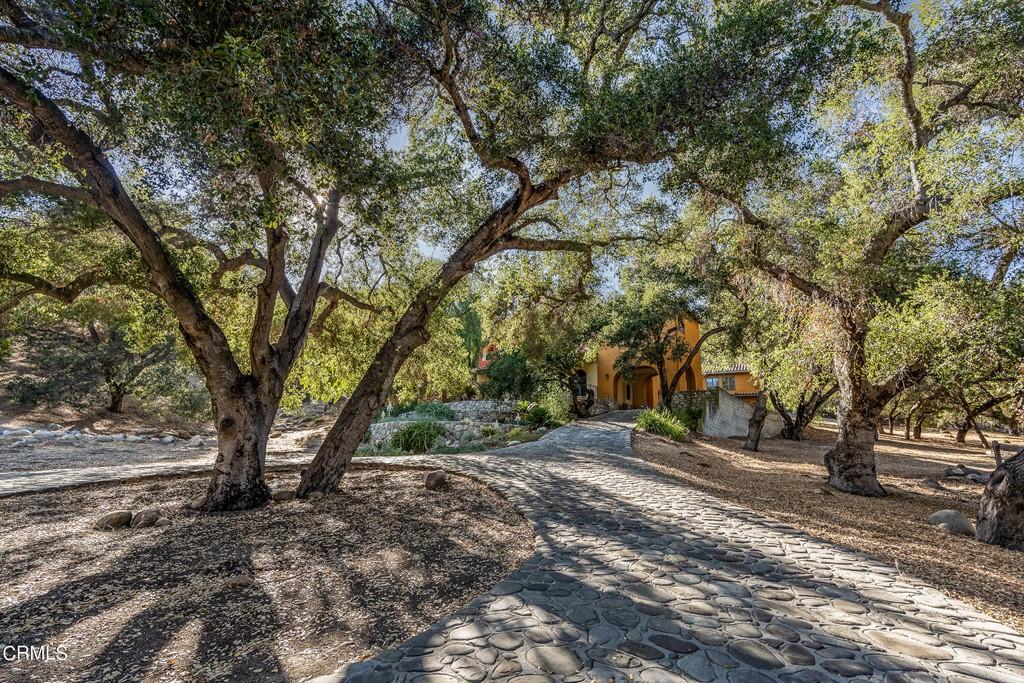 10618 Encino Drive Property Photo