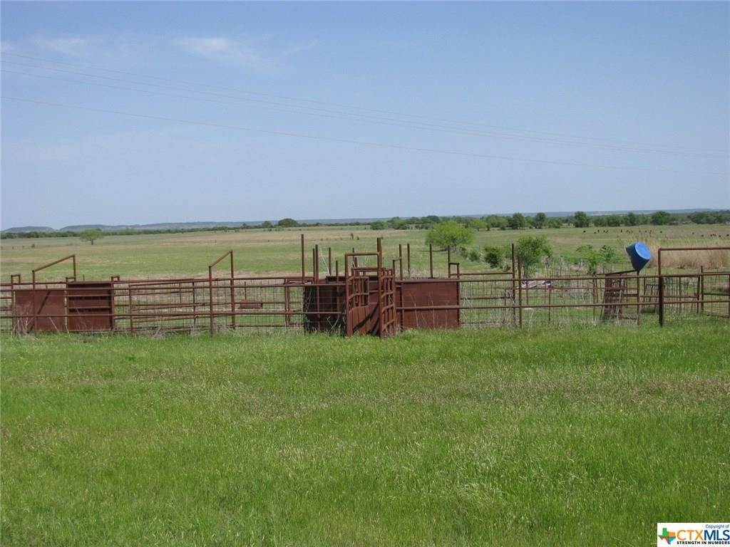TBD County Rd 139 Property Photo - Gatesville, TX real estate listing
