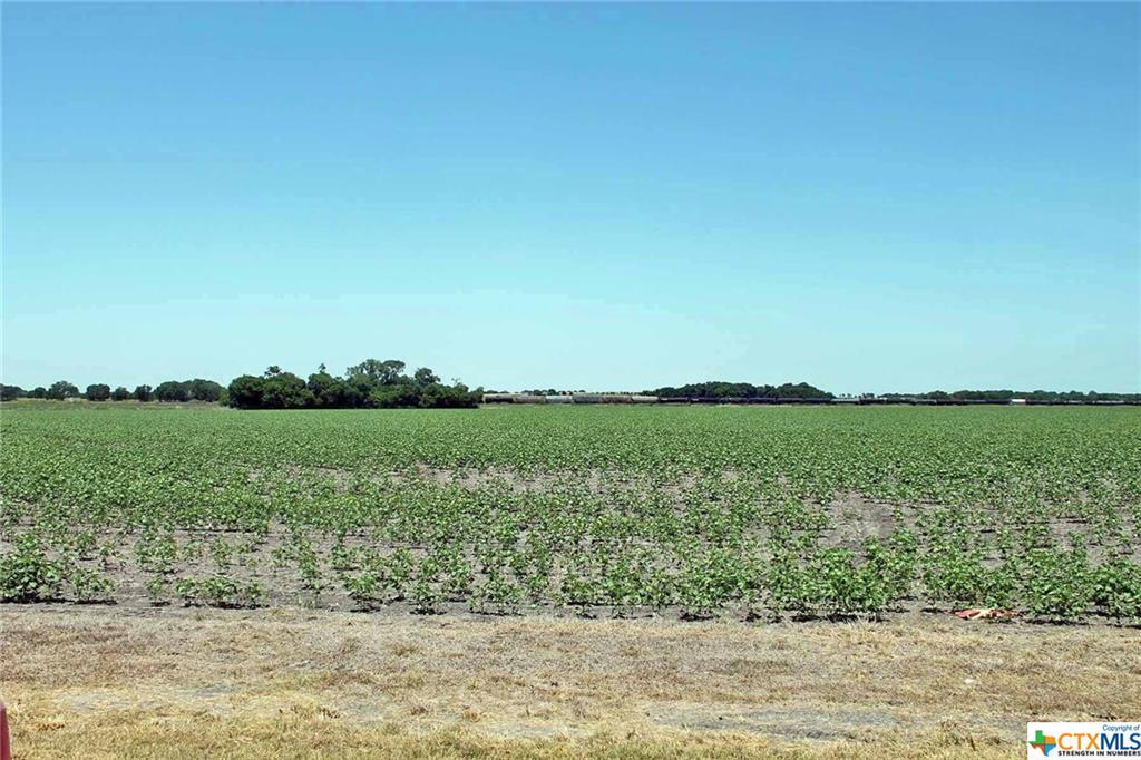00 W San Antonio Property Photo - Lockhart, TX real estate listing