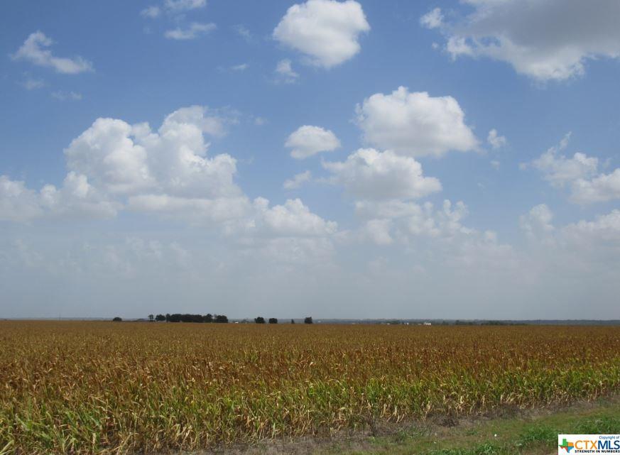 TBD FM 2269 Property Photo - Buckholts, TX real estate listing