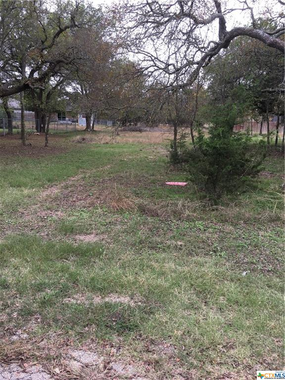 0000 Willow Run Drive Property Photo - Morgans Point Resort, TX real estate listing