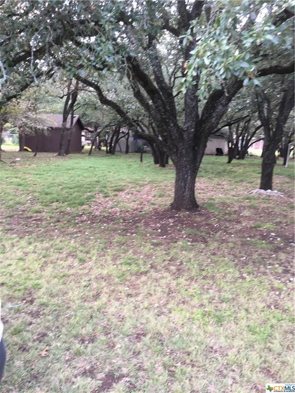 34 Bluebonnet Property Photo - Morgans Point Resort, TX real estate listing