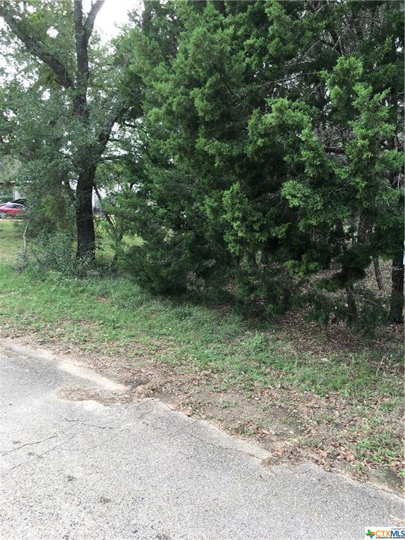 0000 Briarwood Road Property Photo - Morgans Point Resort, TX real estate listing