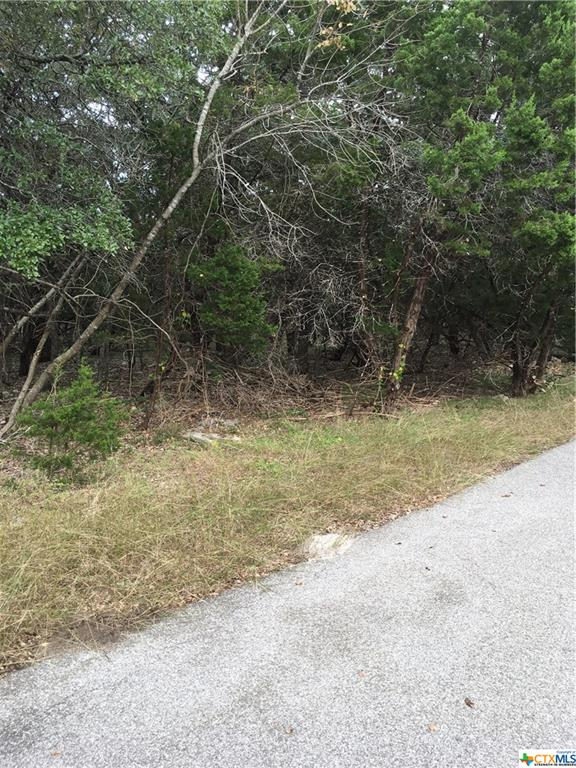 0000 Lake Forest Property Photo - Morgans Point Resort, TX real estate listing