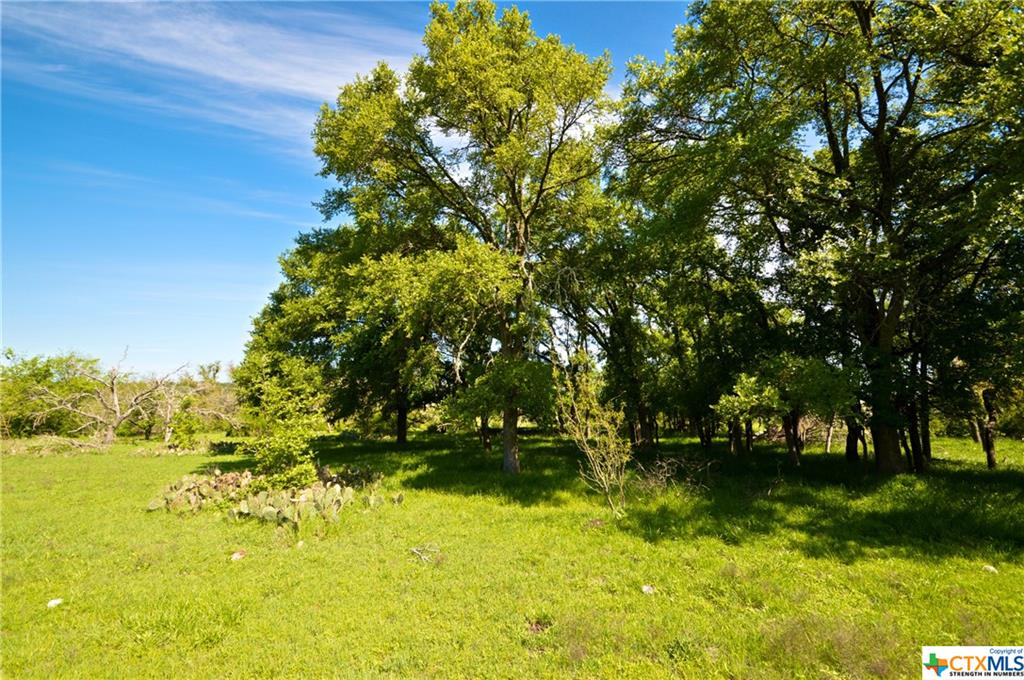 0 Langford Cove Lot 8 Property Photo - Evant, TX real estate listing