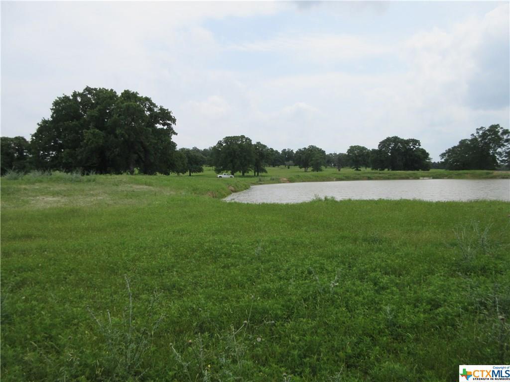 3029 Mule Creek Road Property Photo - Harwood, TX real estate listing