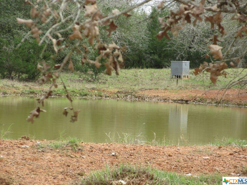 000 FM 1386 Property Photo - Harwood, TX real estate listing