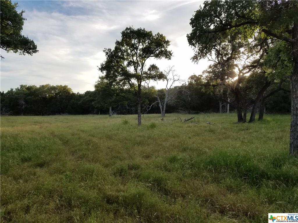 7744 Owl Creek Park Road Property Photo - Gatesville, TX real estate listing