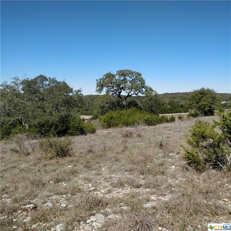 2366 Comal Springs Property Photo