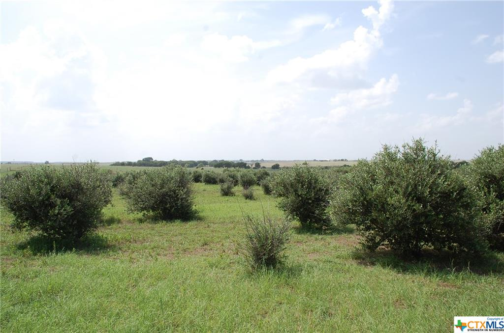 780 County Rd 330 Property Photo - Granger, TX real estate listing