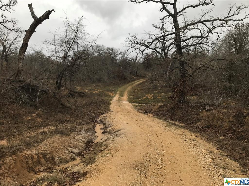 2709 & TBD County Road 334 Property Photo - Stockdale, TX real estate listing