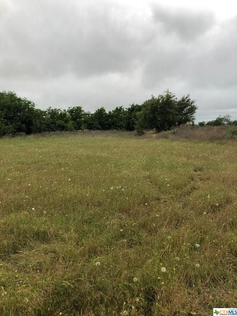 0 FM 970 Property Photo - Florence, TX real estate listing