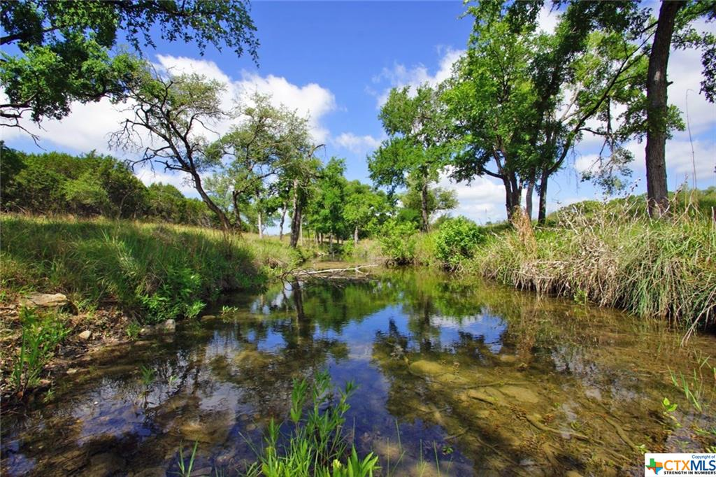 Lot 11A County Road 225 Property Photo - Briggs, TX real estate listing