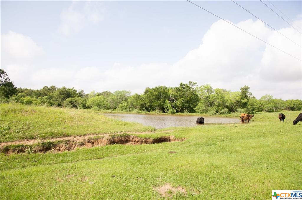 County Rd 463 Property Photo - Harwood, TX real estate listing