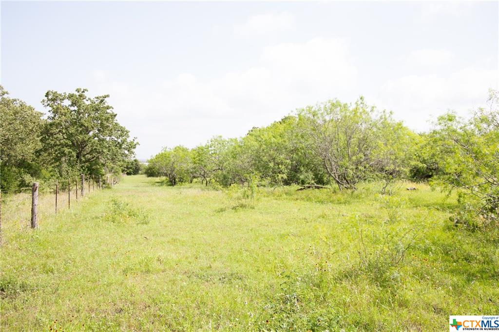 000 County Rd 463 Property Photo - Harwood, TX real estate listing