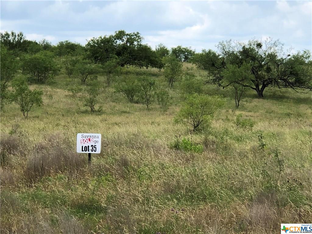 2546 County Road 2800 Property Photo - Lometa, TX real estate listing