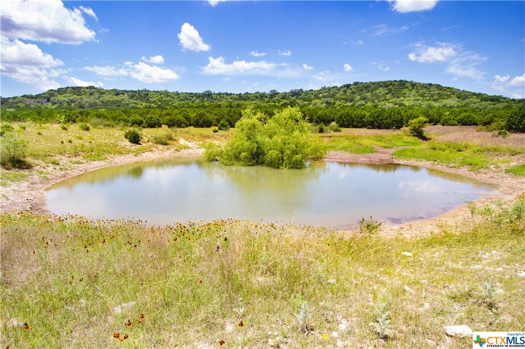 Lot Fm 1113 Property Photo - Copperas Cove, TX real estate listing