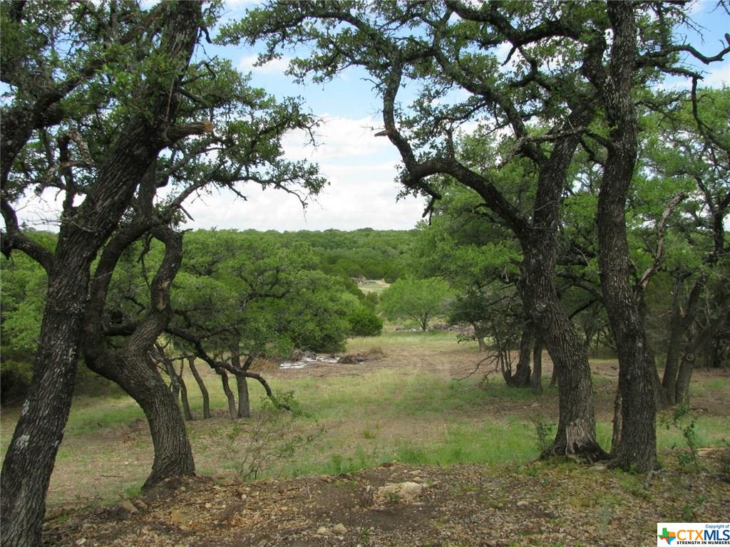 TBD94 County Rd 162 Property Photo - Evant, TX real estate listing