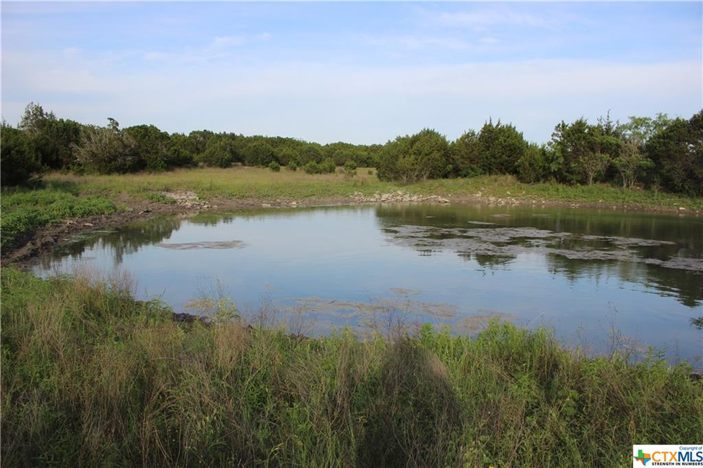 TBD - 5 FM 1241 Property Photo - Evant, TX real estate listing