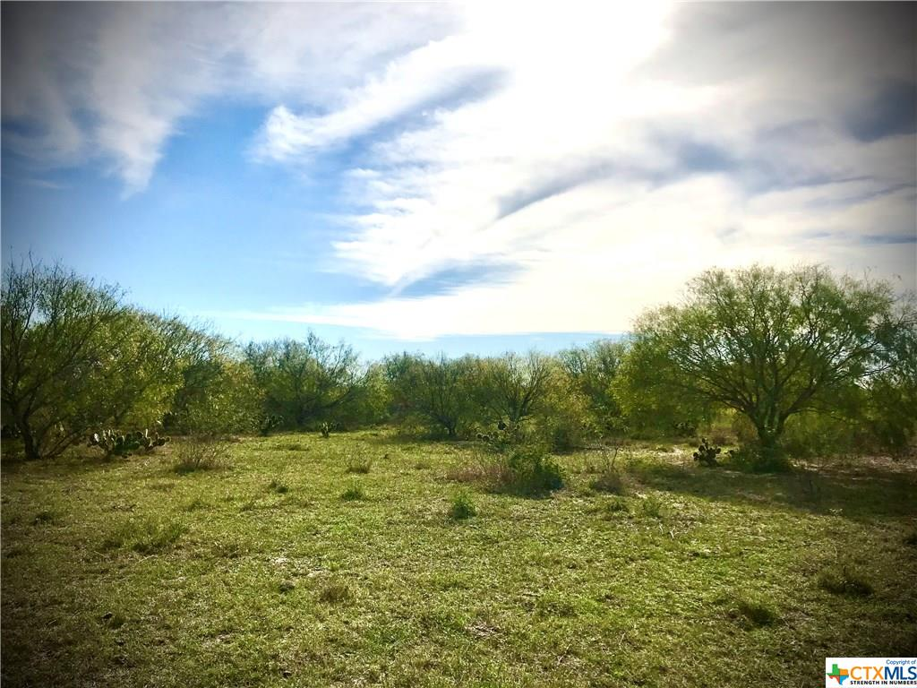 Lot 1, 2 & 21 Hwy 281 So. Ben Bolt end of Aransas Pass Property Photo - Alice, TX real estate listing