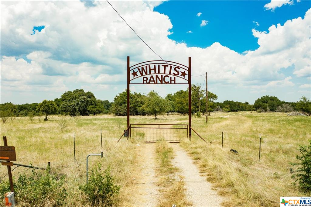 TBD George Wilson Road Property Photo - Belton, TX real estate listing