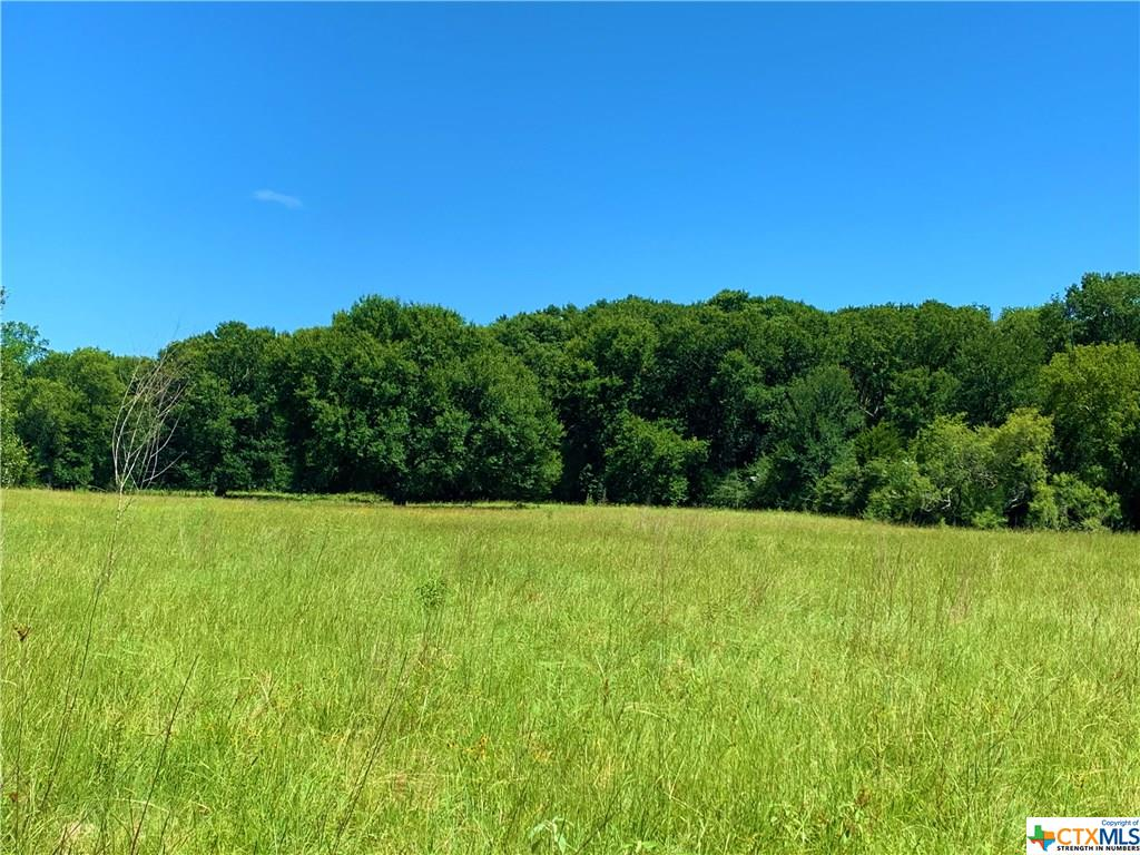 TBD Roy Road Property Photo - Flatonia, TX real estate listing