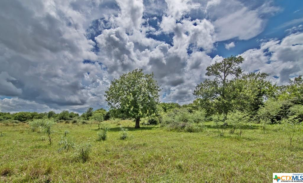 0 US Hwy 59 Property Photo - Edna, TX real estate listing