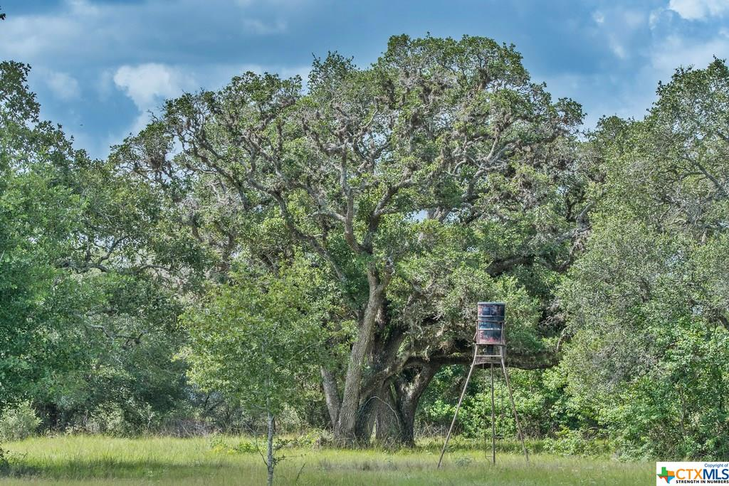 881 Private Road 1265 Property Photo - Edna, TX real estate listing