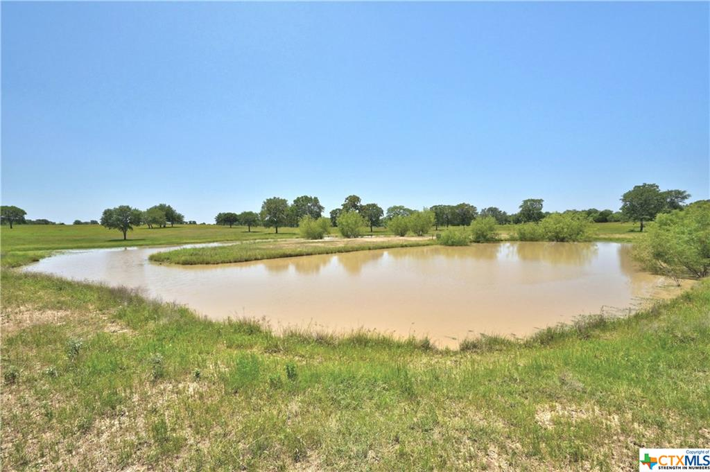000 County Rd 462 Property Photo - Harwood, TX real estate listing