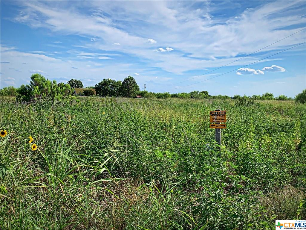 1807 Country Road 131 Property Photo - Buckholts, TX real estate listing