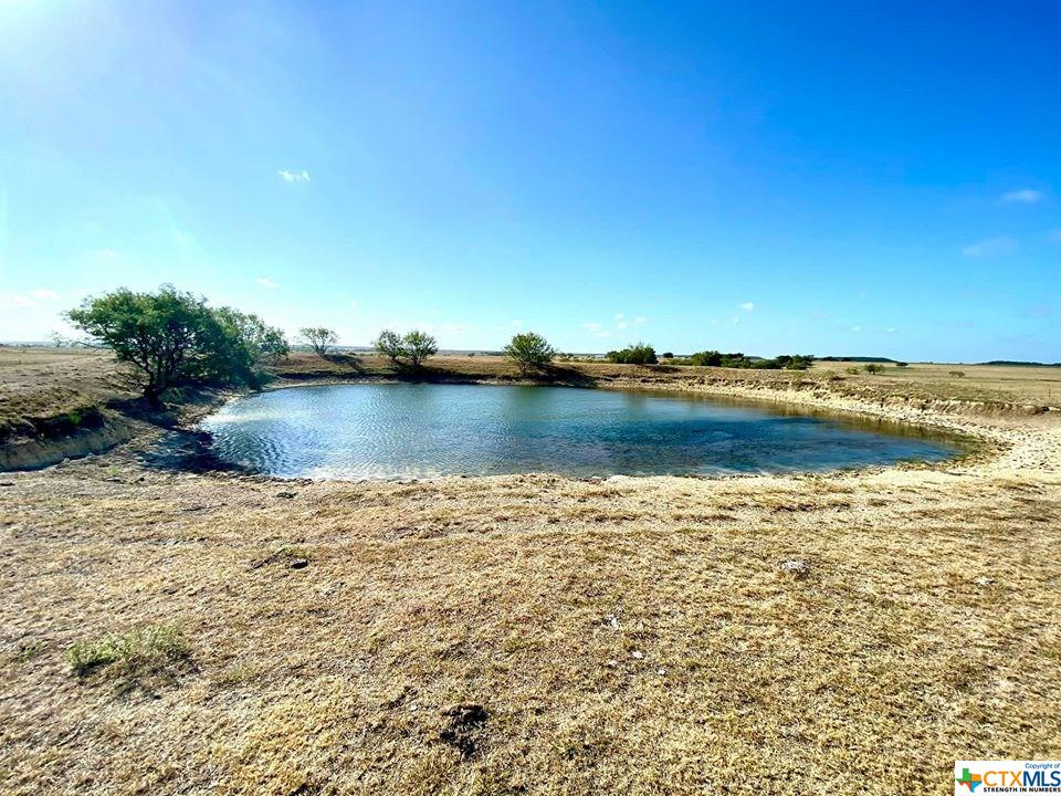 TBD TRACT 13 FM 1783 Property Photo - Gatesville, TX real estate listing