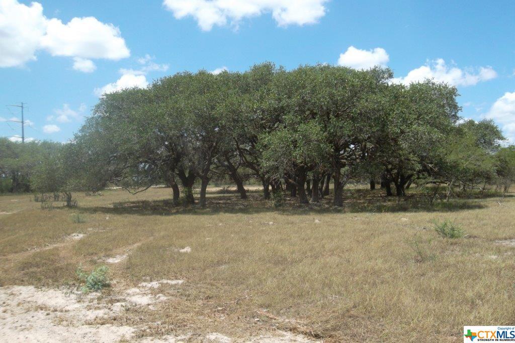 0 FM 2506 Property Photo - Fannin, TX real estate listing