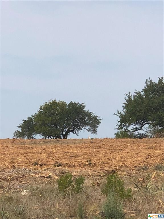 00 CR 281 #14 Property Photo - Hico, TX real estate listing